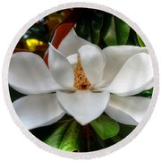 Magnolia Bloom Round Beach Towel by Ronda Ryan