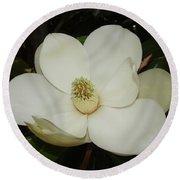 Magnolia Blossom 5 Round Beach Towel