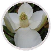 Magnolia Blossom 6 Round Beach Towel