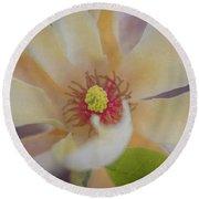 Magnolia Blossom Round Beach Towel by Tom Singleton