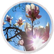 Round Beach Towel featuring the photograph Magnolia Blossoms by Jean Haynes