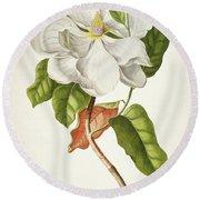 Magnolia Botanical Print Round Beach Towel