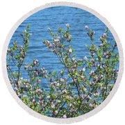 Magnolia Flowering Tree Blue Water Round Beach Towel