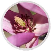 Round Beach Towel featuring the photograph Magnolia by Heidi Poulin