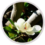 Magnolia Nest Round Beach Towel