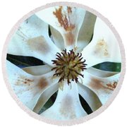 Magnolia Pinwheel Round Beach Towel