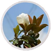 Round Beach Towel featuring the photograph Magnolia Topper by Maria Urso