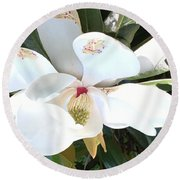 Round Beach Towel featuring the photograph Magnolia Tree Bloom by Debra Crank