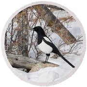 Magpie - 6892 Round Beach Towel
