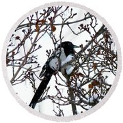 Round Beach Towel featuring the photograph Magpie In A Snowstorm by Will Borden