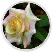 Round Beach Towel featuring the photograph Maid Of Honour Rose 003 by George Bostian