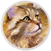 Main Coon Round Beach Towel by Judith Levins
