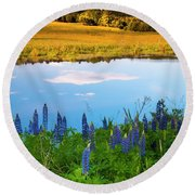 Round Beach Towel featuring the photograph Maine Field Of Lupines by Ranjay Mitra