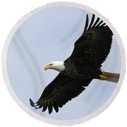 Majestic Bald Eagle Round Beach Towel