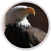 Majestic Eagle Round Beach Towel by Marie Leslie