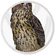 Majestic Eurasian Northern Eagle Owl Bubo Bubo - Hibou Grand-duc - Buho Real - Nationalpark Eifel Round Beach Towel