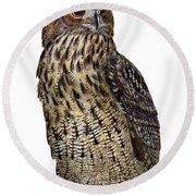Majestic Eurasian Northern Eagle Owl Bubo Bubo - Hibou Grand-duc - Buho Real - Nationalpark Eifel Round Beach Towel