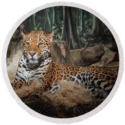 Majestic Leopard Round Beach Towel