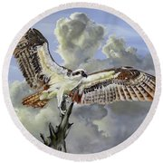 Majestic Sea Hawk Round Beach Towel