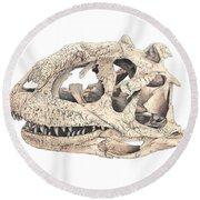 Majungasaur Skull Round Beach Towel