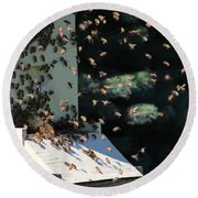 Round Beach Towel featuring the photograph Making Honey - Landscape by Colleen Cornelius
