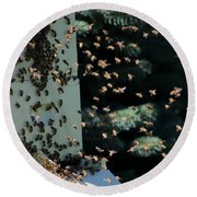 Round Beach Towel featuring the photograph Making Honey - Portrait by Colleen Cornelius