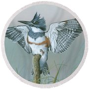 Male Belted Kingfisher Round Beach Towel