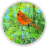 Male Cardinal In Juniper Tree Round Beach Towel