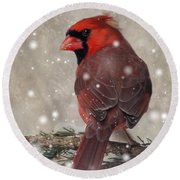 Male Cardinal In Snow #1 Round Beach Towel