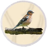 Male Chaffinch, Transparent Background Round Beach Towel