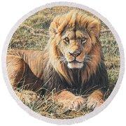Male Lion Portrait Round Beach Towel