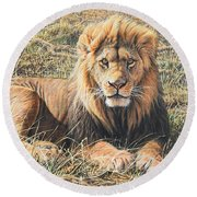 Round Beach Towel featuring the painting Male Lion Portrait by Alan M Hunt
