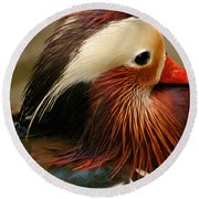 Male Mandarin Duck China Round Beach Towel