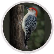 Male Red-bellied Woodpecker Round Beach Towel
