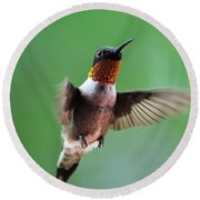 Male Ruby-throated Hummingbird Round Beach Towel by Kathy Eickenberg