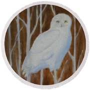 Male Snowy Owl Portrait Round Beach Towel