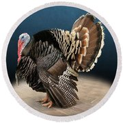 Male Turkey Strutting Round Beach Towel