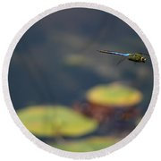 Malibu Blue Dragonfly Flying Over Lotus Pond Round Beach Towel