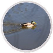 Mallard Duck Burgess Res Co Round Beach Towel