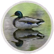 Round Beach Towel featuring the photograph Mallard In Mountain Water by Mark Myhaver