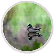 Round Beach Towel featuring the photograph Mallard In Reflecting Pool H58 by Mark Myhaver