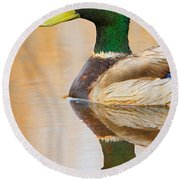 Mallard Mirror Round Beach Towel