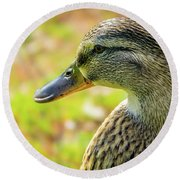 Mallard Portrait - Female Round Beach Towel