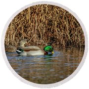 Mallards At The Marsh Round Beach Towel