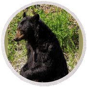 Mama Black Bear Round Beach Towel