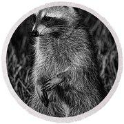 Mama Raccoon Round Beach Towel