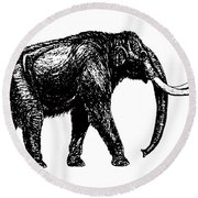 Mammoth Tee Round Beach Towel
