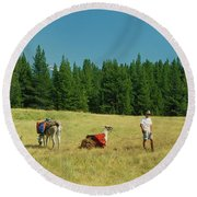 Man Posing With Llamas In A Beautiful Grassy Meadow Round Beach Towel