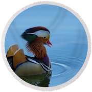 Majestic Mandarin Duck Round Beach Towel