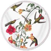 Mango Hummingbird Bird Round Beach Towel